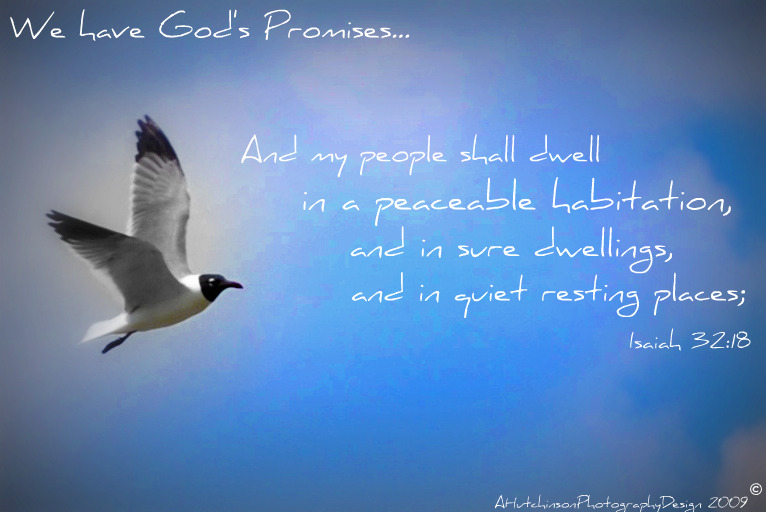 We Have God's Promises...in His Voice!
