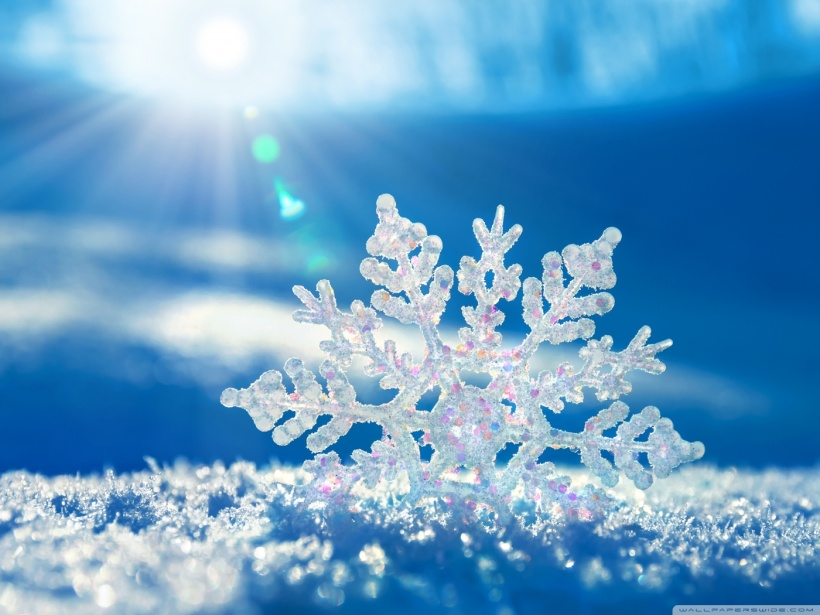 Snowflake-Pictures-11