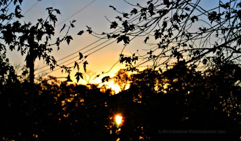 Morning Rising East